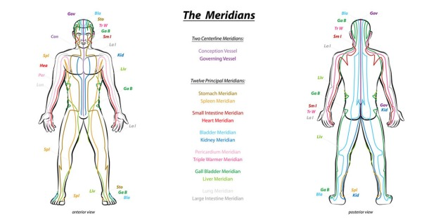 Meridian System Chart - Male body with principal and centerline
